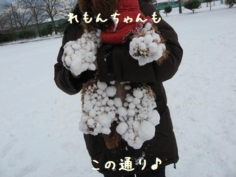 20100119_001_030