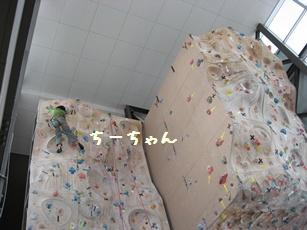 20100119_001_055