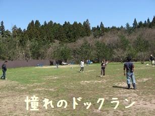 Img_3270_2