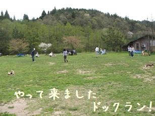 Img_2504